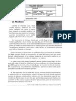 evaluacion pac periodo 3 4° basico 2015 imprimir