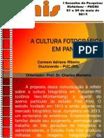 A Cultura Fotográfica Em Panambi (RS)