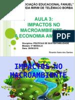 Impactos No Macroambiente e a Economia Ambiental