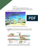 Paleozoico Moderno, Mesozoico y Cenozoico