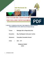 CAPTURA Y OBSERVACION DEL CRECIMIENTO POBLACIONAL POR REPRODUCCION ASEXUAL DE Paramecium sp..docx