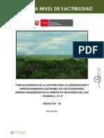 PIPCONSERVACION_FACTIBILIDAD_04.07.12.pdf