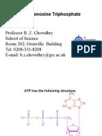 ATP and Phosphorylation.ppt