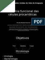 Anatomia funcional das células procarióticas.ppt
