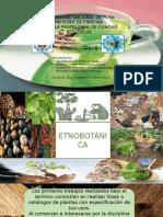 Seminario N° 7 - Etnobotanica