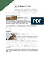 Fauna Chilena de La Zona Norte