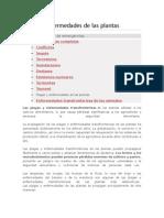 Plagas y Enfermedades de Las Plantas FAO
