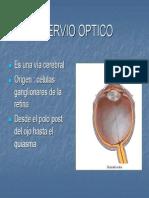 NERVIO+OPTICO