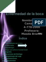 Enfermedad de La Boca Prresentacion de Informatica