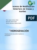 Procesos de Modificación y Deterioro de Grasas y Aceites- Díaz López Aimé, Morones Galicia Rubí , Rosillo Mendoza Debora