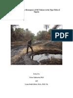 Peace building book.pdf