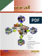 Informe Mineral 2006 1o Semestre