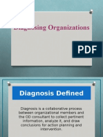 5 - Diagnosing Organizations