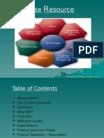 Enterpriseresourceplanning 110708080734 Phpapp02 (1)