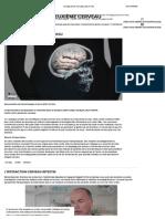 Le Ventre, Notre Deuxième Cerveau _ ARTE Future
