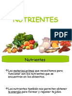 nutrientes.ppt