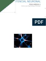 Potencial Del Neurón