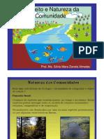 Aula 2 - Conceito e Natureza Da Comunidade - PDF