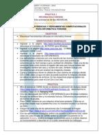 Practica 1 Informatica Forense 2015 2