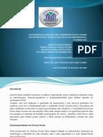 ATPS Instrumentos e Técnicas do Serviço Social 17-05-2015 (1).pptx