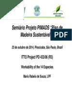 Apresentacao-Mario_lpf.pdf