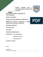 COLEGIO SUPERIOR PARA LA EDUCACIÓN INTEGRAL INTERCULTURAL DE OAXACA(correcion).docx