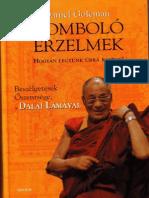 Daniel Goleman - Romboló érzelmek.pdf