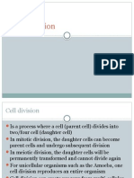 cell division lecture