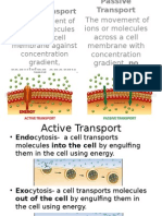 transport of molecules