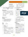 Resumen Ejecutivo Español