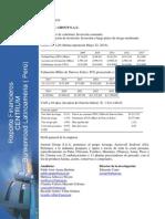 _austral_group balance general.pdf