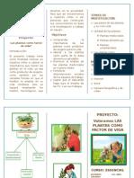 TRIPTICO DEL PROYECTO VALORAMOS LAS PLANTAS COMO FACTOR DE VIDA.doc