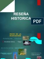 acuicultura en el peru.ppt