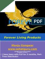 flpbusinessplan-100826072525-phpapp02