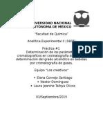 Informe Analitica CG
