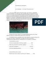 Razas Porcinas Más Explotadas de Venezuela y Explotcon Porcin