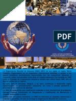 organizacion mundial de aduanas