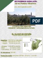 El futuro de los pueblos olivareros. La oleicultura andaluza