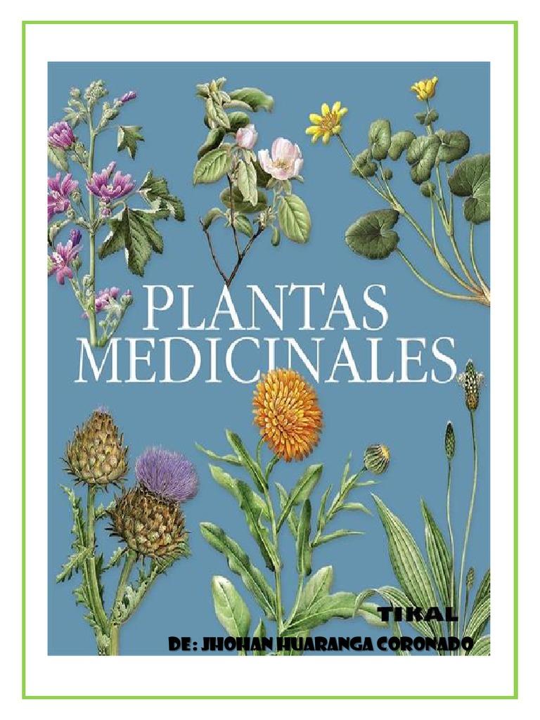 plantas medicinales y ornamentales wikipedia resultado