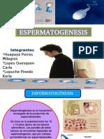 Diapositivas de Fisiologia