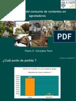 Estimacion Del Consumo Voluntario en Rumiantes en Pastoreo de Agostadero