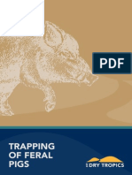 Trapping of Feral Pigs
