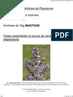 Mastose _ La Cabane Aux Arômes de Pescalune