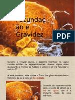 fecund-e-desv-embrion-1225146871760133-9