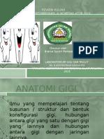 Anatomi, Pertumbuhan ,& Nomenklatur Gigi