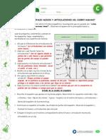 Ecurso Pauta PDF