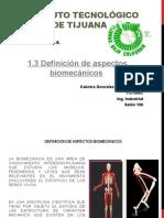 1.3 Definicion de Aspectos Biomecanicos