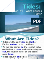 tides and lunar phases