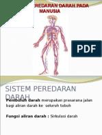 Sistem Pembuluh Darah