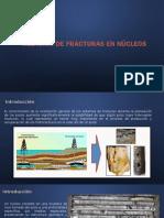Medición de Fracturas en Núcleos.